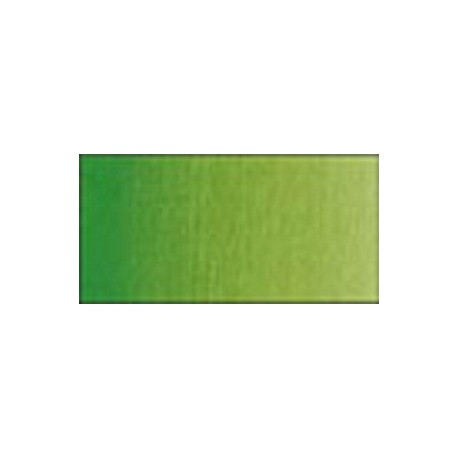 Vert de vessie permanent - Aquarelles Tube 5 ml Winsor & Newton