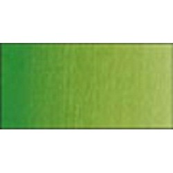 Vert de vessie permanent - Tube 14 ml Winsor & Newton